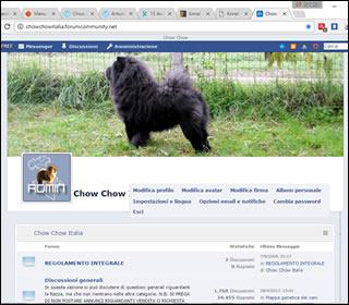 Forum Chow Chow Italia
