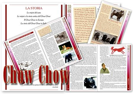 Chow Chow di Isabella Milani e Siro Baruffladi - 2008